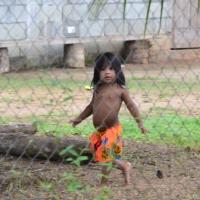 Darien, território bem trilhado em: Playona - Tribo Emberá