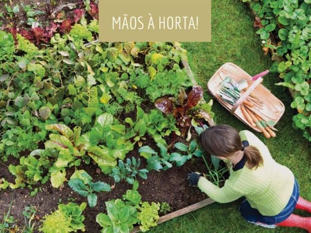horta1